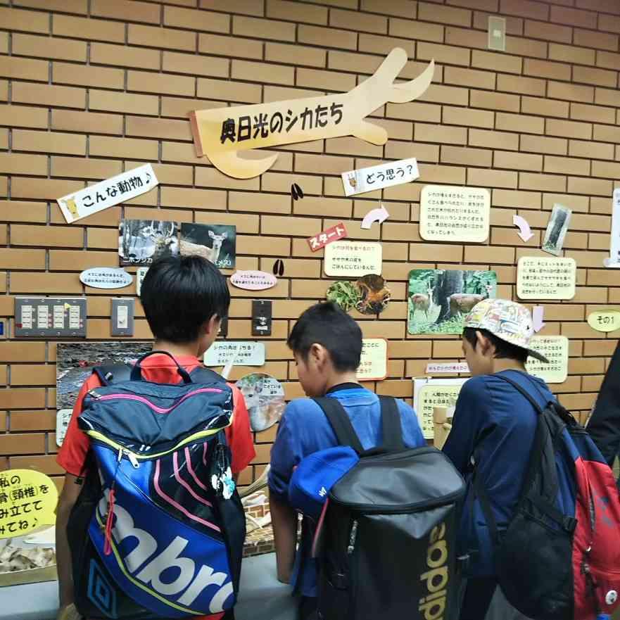 日光自然博物館②IMG_20190618_165649.jpg
